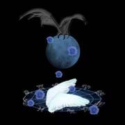 黑色背景插画(羽毛装饰) - 鳕鯡鮩鲒 - ,