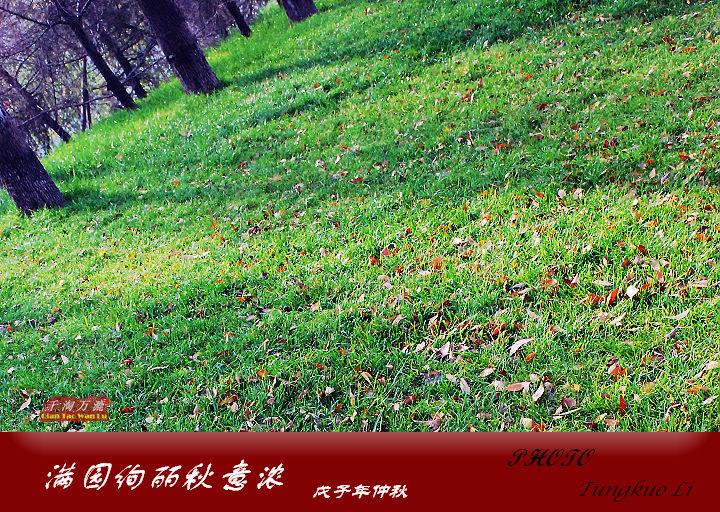 满园绚丽秋意浓(PIC Original) - 千淘万漉 - 千淘万漉 de 花果山