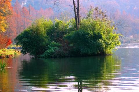 (原创)流水东去春依旧    - 疏勒河的红柳 - 疏勒河的红柳