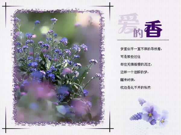 精美圖文欣賞62 - 唐老鴨(kenltx) - 唐老鴨(kenltx)的博客