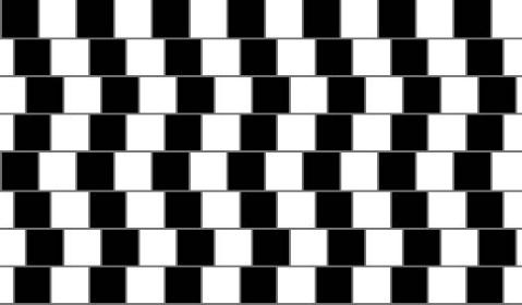 你的眼睛欺骗你:奇妙的视觉艺术(二) - 天道酬勤 - ngyrw-天道酬勤的博客