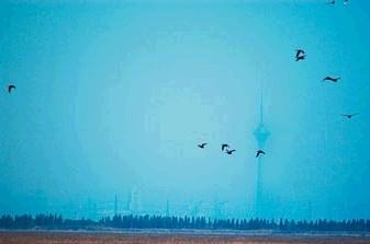 海市蜃楼图片集 - 九头鸟 - ...欢迎四方博客...