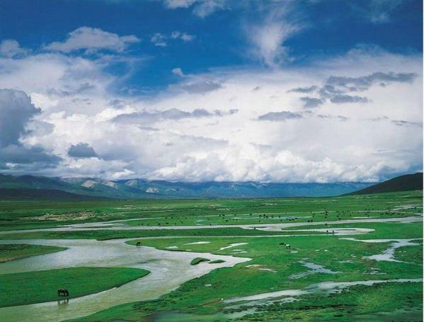 引用 [美图欣赏]草原风光 - 高山流水 - 物质、精神和灵魂