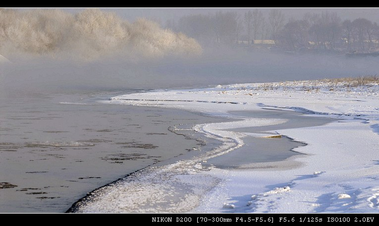 雾里看花——雾凇(三) - 西樱 - 走马观景