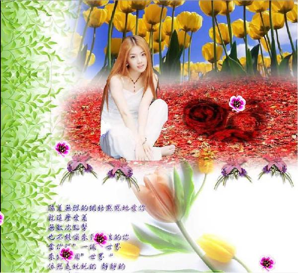 【原】隔着网络爱你 - ☆秋天不回来☆ - 秋天不回来☆琴儿☆