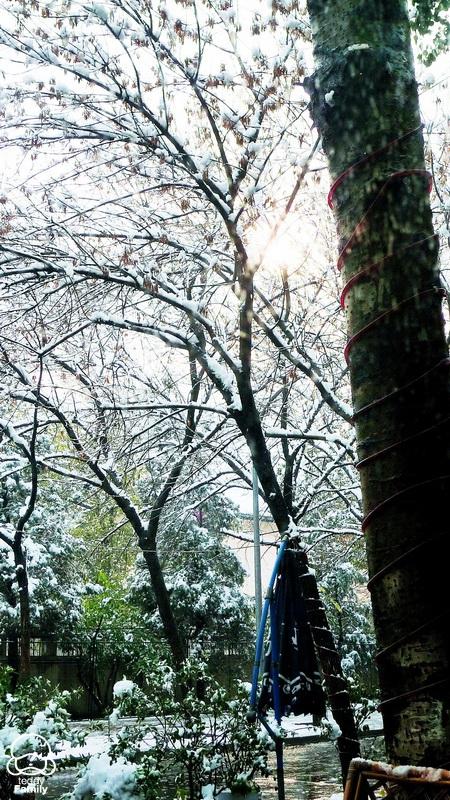 SNOW DAY - 燕燕 - 彦   色