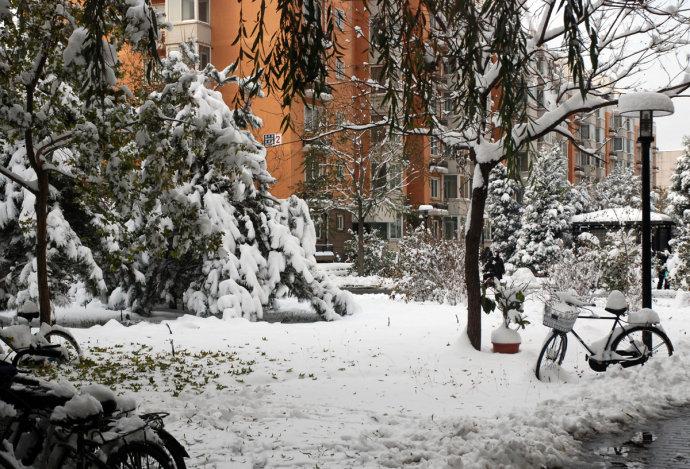 雪 - 刘兵 - 刘兵的博客