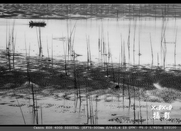 【海西采风记】13、随拍——轻舟逐波 - xixi - 老孟(xixi)旅游摄影博客