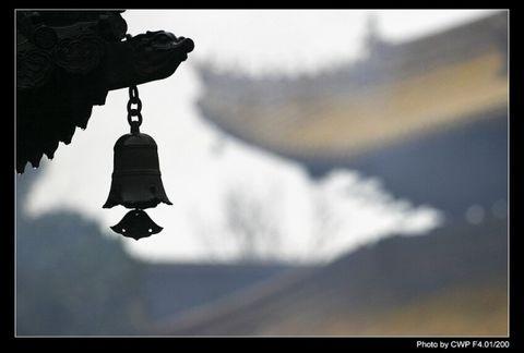 新年快乐 - 空山听雨 - 空山听雨:摄影是一种力量