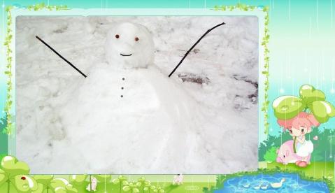 雪后 - 花影摇曳 - 花影摇曳的博客!