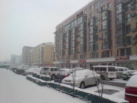 2009年的第一场雪 - 惟吾德馨 - 陋室札记