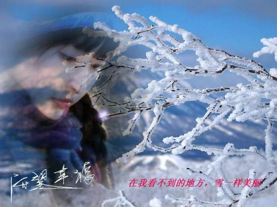 在我看不到的地方,雪一样美丽 - 守望幸福 - 守望幸福