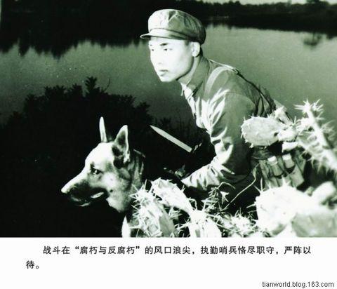 中国边防反偷渡的历史变迁(图文) - tianworld - 天下之至柔,驰骋天下之至坚