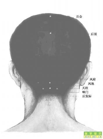 人体穴位图解 - lxraini123 - lxraini123的个人主页