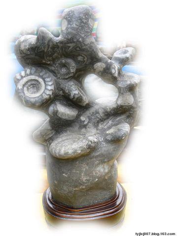 赏石 - h_x_y_123456 - h_x_y_123456的博客