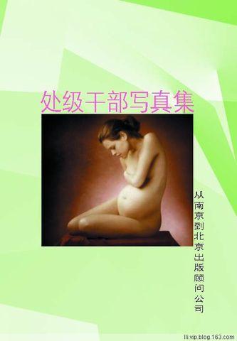 图书推荐0011号:《处级干部写真集》 - 李黎 - 确实是增长的过程