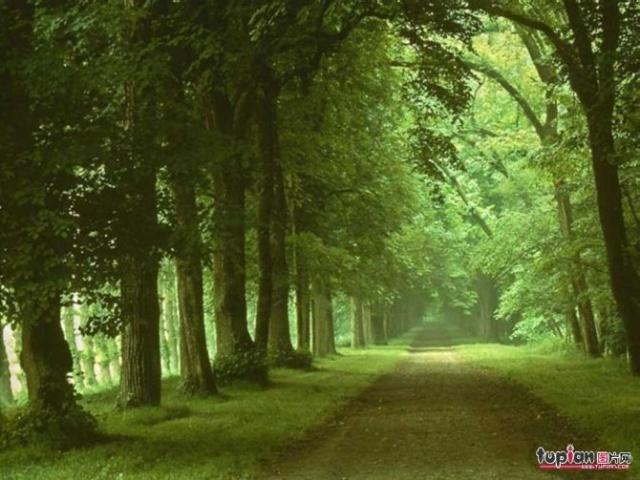 心宽路自宽 - 欣武 - 动以强身健体,静以修身养性。