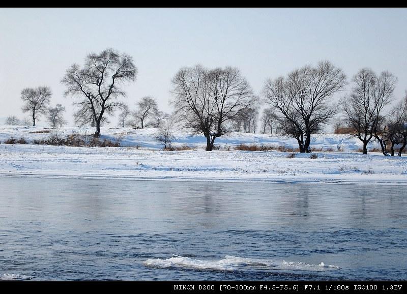 比下雪更好____雾凇(二) - 西樱 - 走马观景