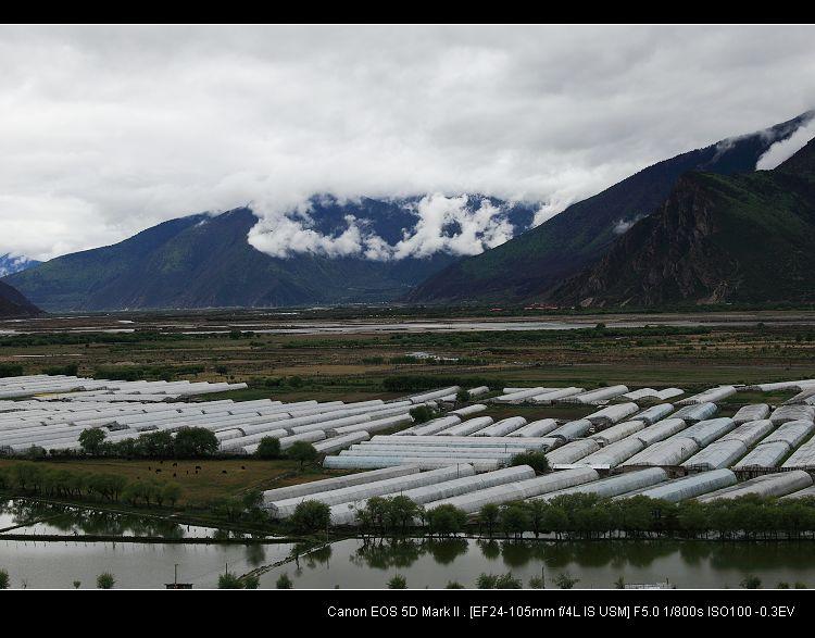 西藏阿里--湿漉漉的林芝 - 海阔山遥 - .