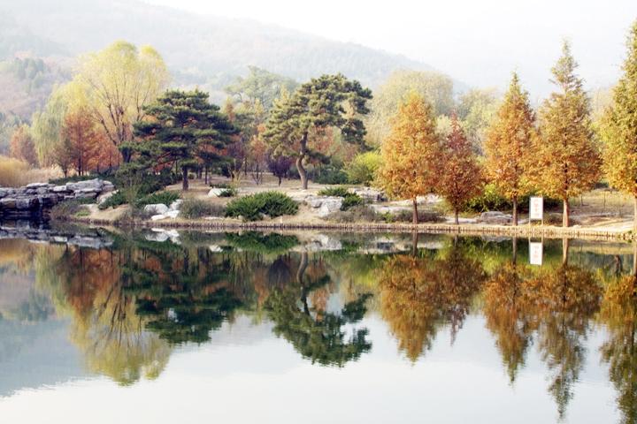 (原创摄影)曝光过度的片子 - 刘炜大老虎 - liuwei77997的博客
