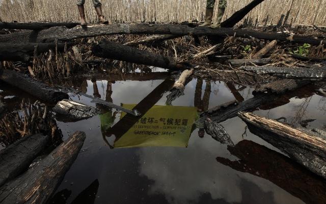鲜为人知的阴谋  跨国集团毁林阴谋  地球在哭泣  - 行者 - 《行者》旅游卫视