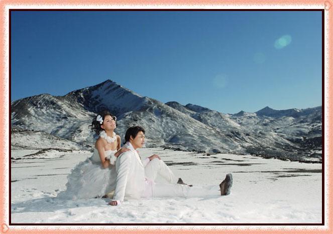 引用 也许爱情真的能抵御严寒 - 彼岸桃花 - .