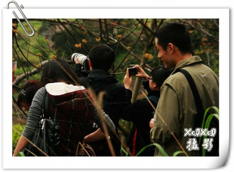【苍鹭拍摄记】——拍摄花絮 - xixi - 老孟(xixi)旅游摄影博客