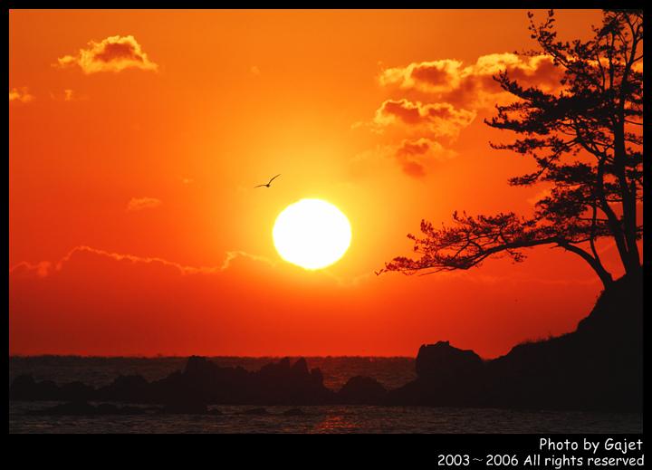 2010年12月21日 - 蓝天 - 夕阳余辉多灿烂 尊严活着是精彩