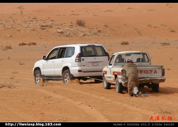 【摄影】新年第二拍(5部分) - 大漠孤烟 - 大漠孤烟的博客