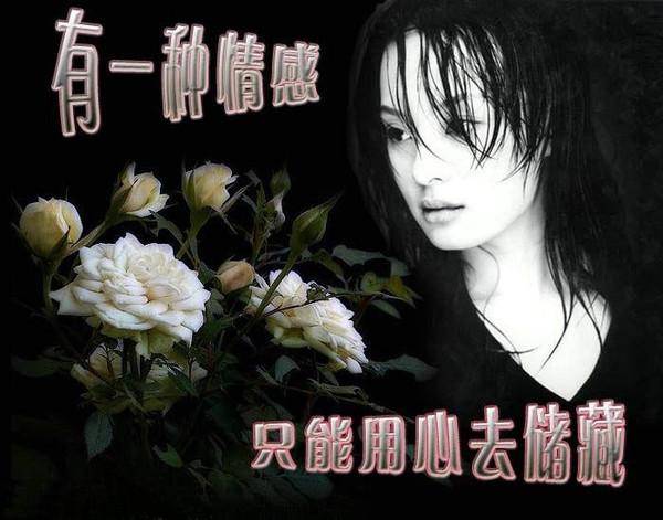 人生难得一知己 - 春暖花会开 - 春暖花会开的BLOG