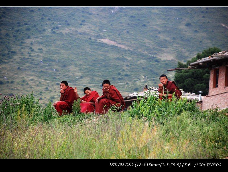 甘南,拉卜楞,花湖 - 西樱 - 走马观景