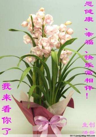 精美、搞笑图片库(七十六) - 雪劲松 - 雪劲松的博客