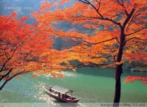 2008年10月29日 - 憨憨 - 寻春