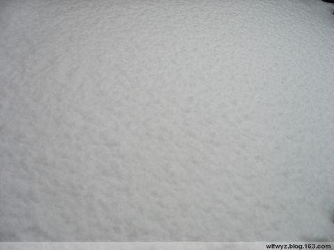 这才是冬天 - 风中的沙 - 风中的沙