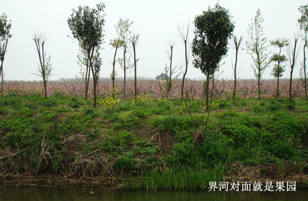 2010/6/9 崇明,界河行 - 欢网2010 - 欢网2010