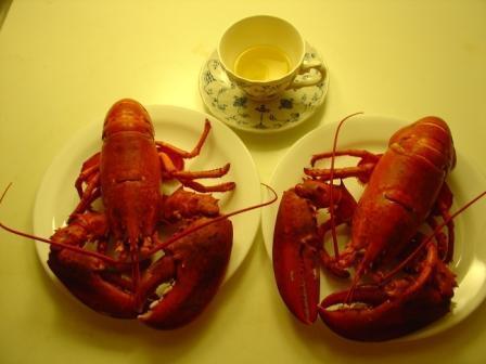 龙虾与樱桃 - 巫昂 - 巫昂智慧所