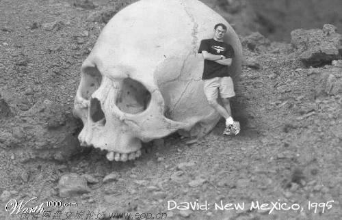 揭秘:不敢公开的考古新发现 - 理睬 - 理睬