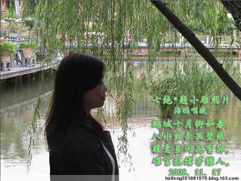 七绝·题小雁照片 - 海鸥唱晚 - haifeng351881979的博客
