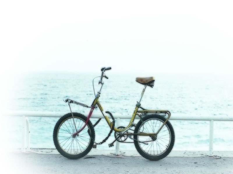 今生  凝望   - 柠檬草 - ningmengcao98的博客