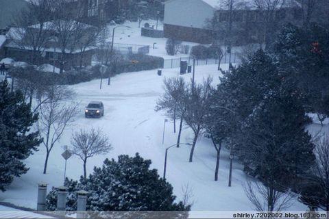 让暴风雪来得更猛烈些吧 - shirley.7202002 - shirley.7202002的博客