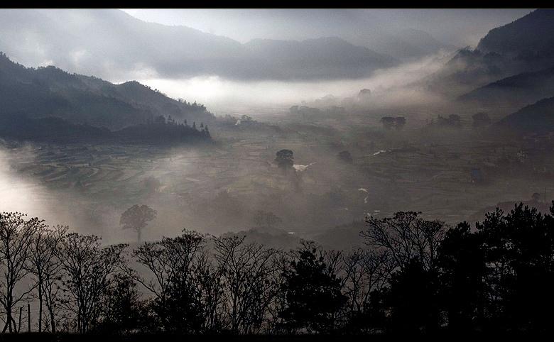 [原创]初冬的江岭 - 歪树 - 歪树