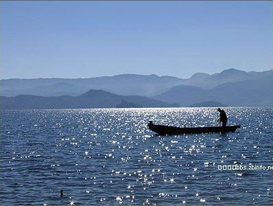 (原创)今夜的梦  有文章 - 疏勒河的红柳 - 疏勒河的红柳