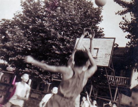 我的业余篮球生涯(1) - 阳光月光 - 阳光月光