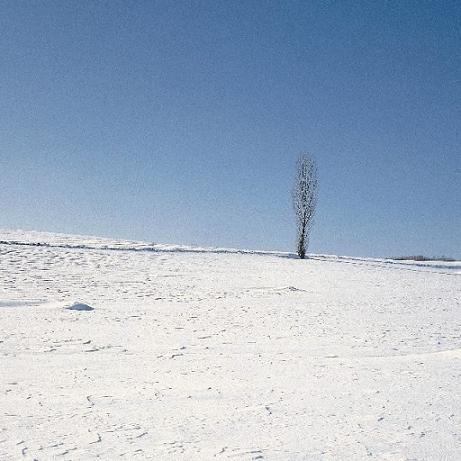 【念情书】雪没了的回忆 - kivo - 念情书◎優しい時間