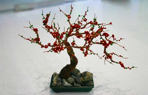 花卉盆景图片(二) - 乘成 - 乘成休闲吧