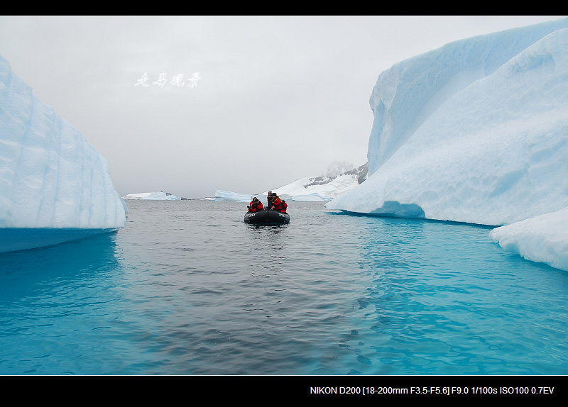 啊,南极(十七) - 西樱 - 走马观景