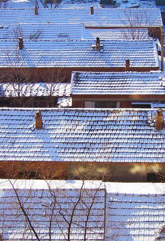 2007的第一场雪 - 涓涓 - beiguodexue-zjk的博客