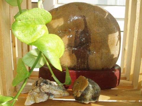 (一)石头河 石河头 头石河 河头石 河石头 头河石   - 赑磊鑫晶珺xxjnzy石家庄 庄家石 - 十六字令