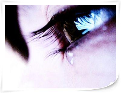 BITTER TEARS(一) - 雁月秋菊 - 流泪的风......