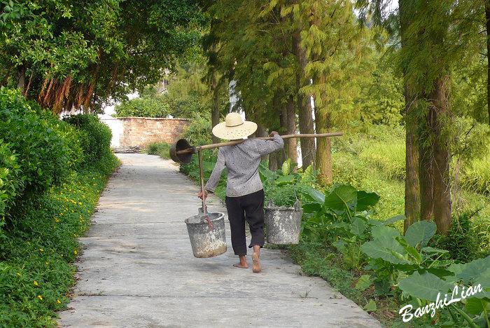 【原创】访莲江村之二 友好的村民 - 半支莲 -